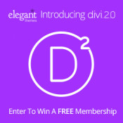 Fabulous Giveaway from Elegant Themes - 3 Developer Accounts Awaiting You