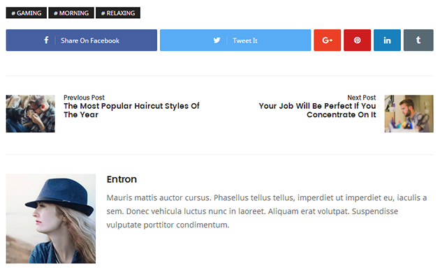 Entron WordPress Theme