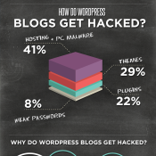 WordPress Security - An Infographic